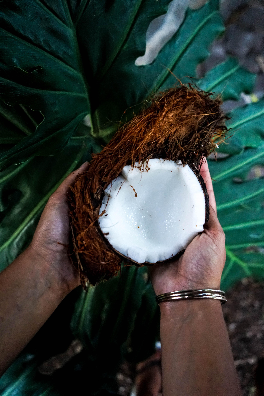 mct oil vs coconut