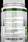 Calcium D-Glucarate Estrogen